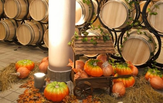 Anul 2016, anul turismului viticol!