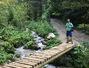 Travel in doi in judetul Brasov: Canionul 7 scari