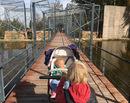 Travel with kids: 5 distractii pentru copii in Brasov