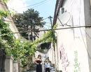 La pas prin Bucuresti: Strada Xenofon, singura strada in trepte sau singura cascada din oras?