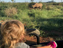 Travel with kids: Doua saptamani in Africa de Sud