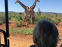 Travel with kids: Safari in Africa de Sud