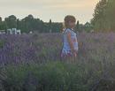 Evadare de o zi din Bucuresti: Plimbare la Comana