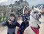 2 saptamani de aventuri spectaculoase in Ecuador cu copiii